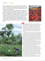 "Aspen Magazine Summer 2012 ""Red Haute Peppers"""
